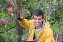 Wirtschaftsbarometer - Landwirtschaft