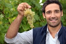 cooperative agricole ottimiste