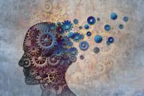studie brain drain